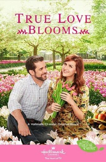 Когда расцветает любовь (ТВ)