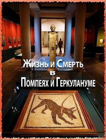 BBC. Жизнь и смерть в Помпеях и Геркулануме (ТВ)